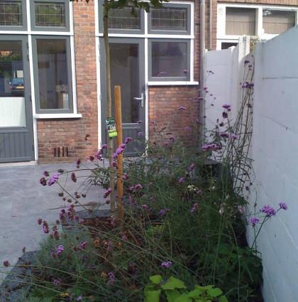 Romantische stadse binnentuin